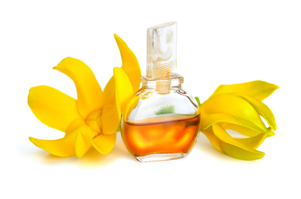 Ylang-Ylang: The Flower Of Flowers