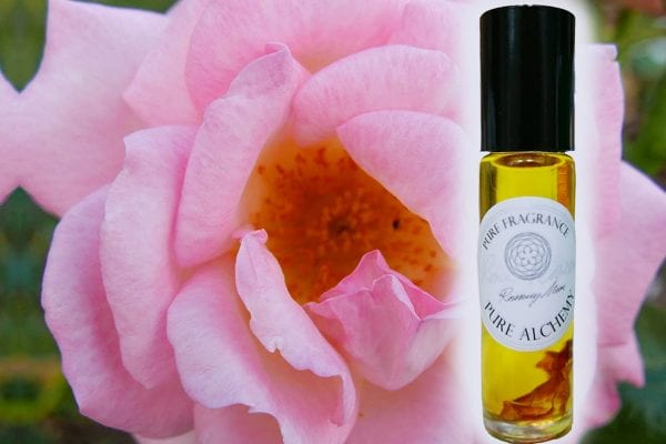 Rosa Damask by Pure Alchemy